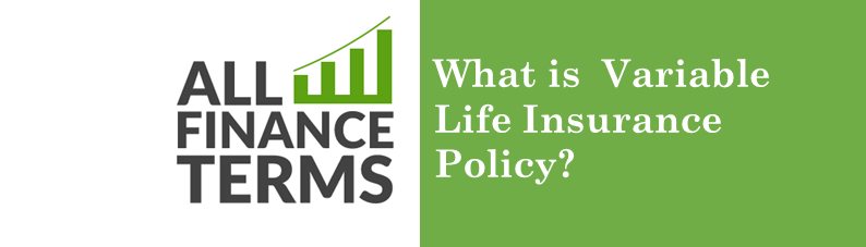 Definition for variable-life-insurance-policy