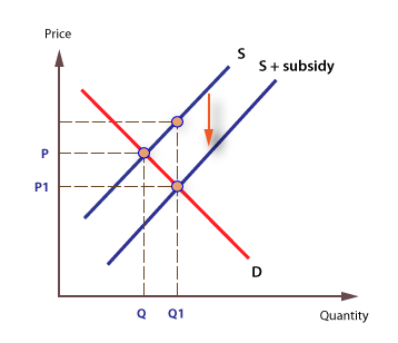 080416 1048 Whatismeant1 - What is Subsidy?